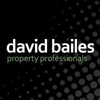 David Bailes logo